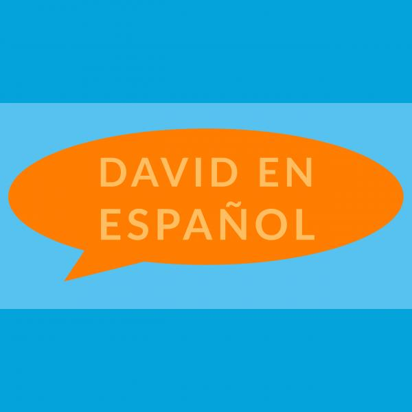 Books in Spanish by David Shannon